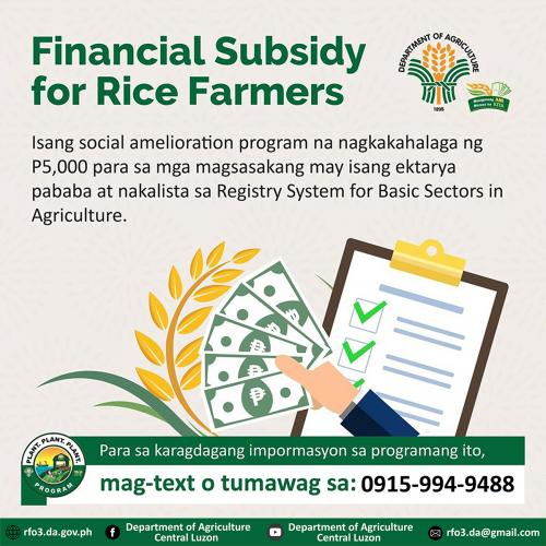 Rice Farmers Financial Subsidy